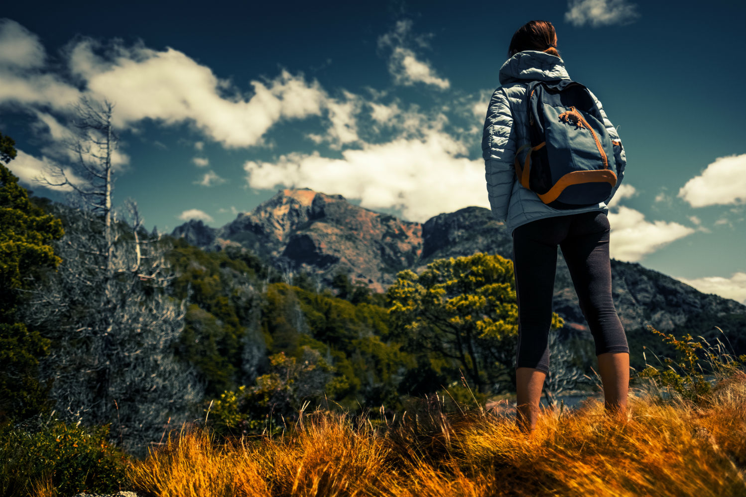 The Best Backpacks for Day Hikes