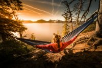 How to hang a hammock when camping
