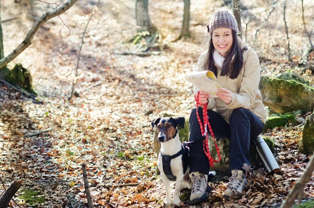 Dog Food to Take When Backpacking